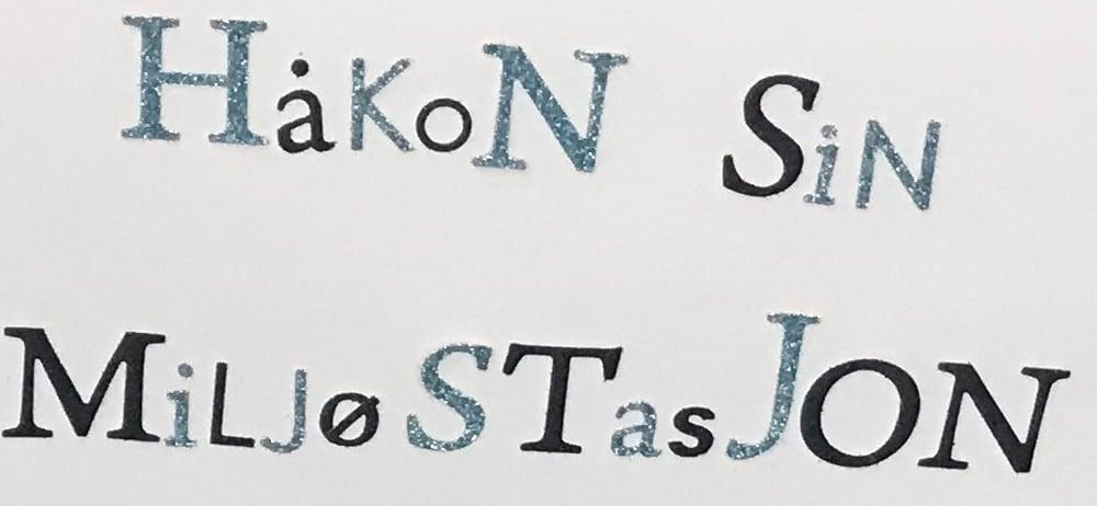 NG_Håkons-miljøstasjon-hjemme__v2_IMG_3120